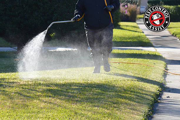 8 Professional Companies to use for Pest Control in Kettering